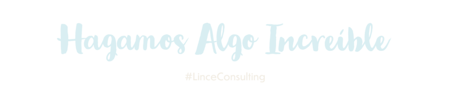 CTA Lince Consulting IV